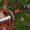 iStock football in leaves reduced size