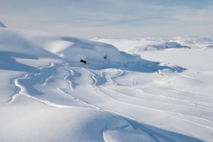 snowy_landscape